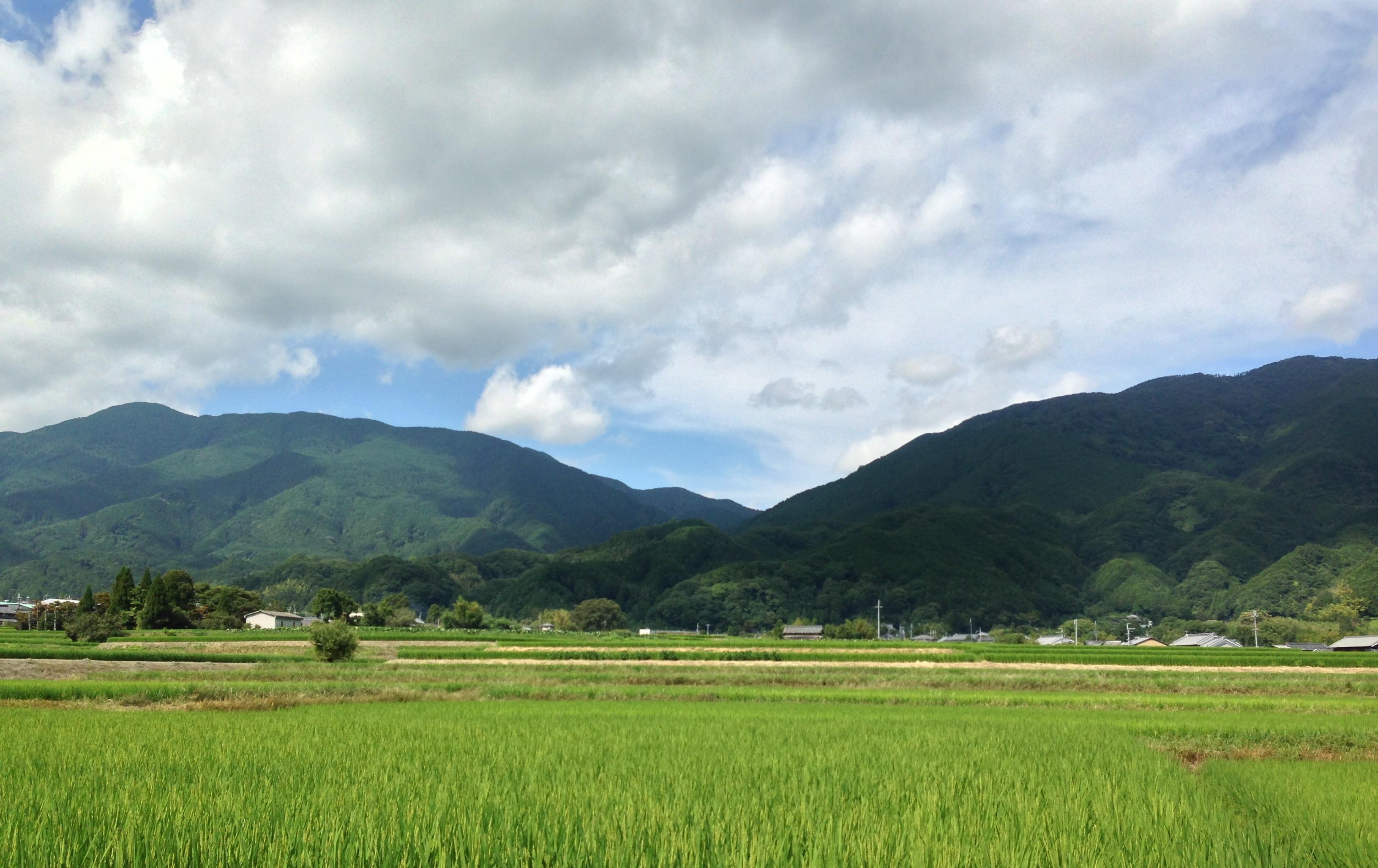 金剛山・葛城山